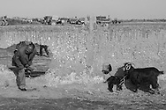 Collection of images taken throughout Uzbekistan featuring black and white photography