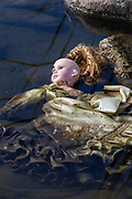 Discarded doll in the Los Angeles River along the Glendale Narrows, Los Angeles, California, USA