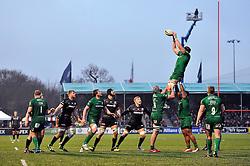 London Irish captain George Skivington rises high to win lineout ball - Photo mandatory by-line: Patrick Khachfe/JMP - Mobile: 07966 386802 03/01/2015 - SPORT - RUGBY UNION - London - Allianz Park - Saracens v London Irish - Aviva Premiership