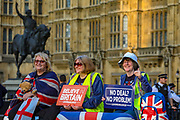 March 29, 2019 - GBR - BREXIT Campaigners attended a rally in Parliament Square after the final leg of the ''March to Leave'' in London, Friday, March 29, 2019. The protest march which started on March 16 in Sunderland, north east England, finishes on Friday March 29 in Parliament Square, London, on what was the original date for Brexit to happen before the recent extension. (Credit Image: © Vedat Xhymshiti/ZUMA Wire)