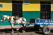 09 JANUARY 2007 - GRANADA, NICARAGUA: A horse cart parked in front of veterinary pharmacy in Granada, Nicaragua. Granada, founded in 1524, is one of the oldest cities in the Americas. Granada was relatively untouched by either the Nicaraguan revolution or the Contra War, so its colonial architecture survived relatively unscathed. It has emerged as the heart of Nicaragua's tourism revival.  Photo by Jack Kurtz / ZUMA Press