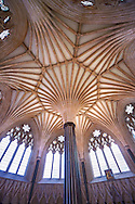 """The vaulted ceiling of the Chapter House of  the medieval Wells Cathedral built in the Early English Gothic style in 1175, Wells Somerset, England . Its Gothic architecture is mostly in Early English style of the late 12th – early 13th centuries. Building began about 1175 at the east end with the choir. Historian John Harvey sees it as Europe's first truly Gothic structure. Its Early English front with 300 sculpted figures, is seen as a """"supreme triumph of the combined plastic arts in England"""".<br /> <br /> Visit our MEDIEVAL PHOTO COLLECTIONS for more   photos  to download or buy as prints https://funkystock.photoshelter.com/gallery-collection/Medieval-Middle-Ages-Historic-Places-Arcaeological-Sites-Pictures-Images-of/C0000B5ZA54_WD0s"""