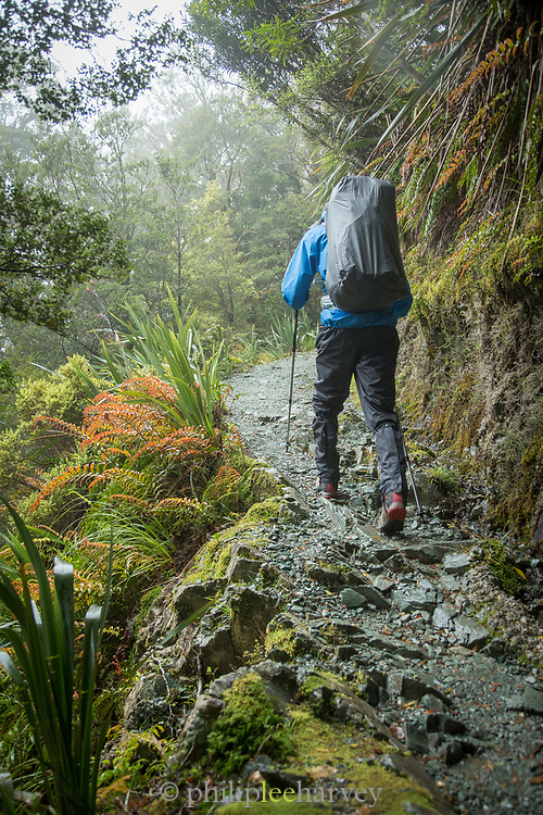 Rear view of a man hiking along the Routeburn Track, South Island, New Zealand