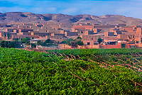 Grape drying houses in the Yarnaz Valley, Turpan, Xinjiang Province. Turpan is a desert oasis. Water for agriculture comes from an impressive ancient karez irrigation system that routes water from the neighboring Tian Shan Mountains via underground tunnels.
