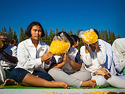 """02 JANUARY 2016 - KHLONG LUANG, PATHUM THANI, THAILAND: Women pray at Wat Phra Dhammakaya on the first day of the 5th annual Dhammachai Dhutanaga (a dhutanga is a """"wandering"""" and translated as pilgrimage). More than 1,300 monks are participating pilgrimage through central Thailand. The purpose of the pilgrimage is to pay homage to the Buddha, preserve Buddhist culture, welcome the new year, and """"develop virtuous Buddhist youth leaders."""" Wat Phra Dhammakaya is the largest Buddhist temple in Thailand and the center of the Dhammakaya movement, a Buddhist sect founded in the 1970s. The monks are using busses on some parts of the pilgrimage this year after complaints about traffic jams caused by the monks walking along main highways.          PHOTO BY JACK KURTZ"""