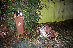 © Licensed to London News Pictures . 05/11/2015 . Oldham , UK . A molten wheelie bin alongside one still standing after it was set alight , on Salisbury Road in Oldham . Manchester Fire reports receiving more than 300 calls in less than 7 hours, from 4.30pm, including to buildings, cars and wheelie bins set alight by arsonists . At some calls fire crews were subject to vandalism , including a hose being sliced whilst it was being used to fight a fire in Leigh and bricks being thrown at crews attending a job in Miles Platting . Fire crews deal with arson attacks across Greater Manchester during Bonfire Night . Photo credit : Joel Goodman/LNP