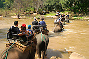 tourists crossing a river on the back of elephants, Elephant training camp chiang; dao near Chiang Mai,  Thailand, Oct 2005
