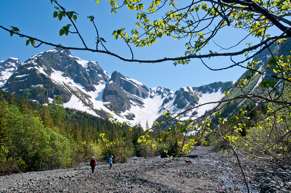 Alaska, Two mature women hikers enjoy walking a sunny blue sky day the hills above Thumb Cove and Resurrection Bay, summer,