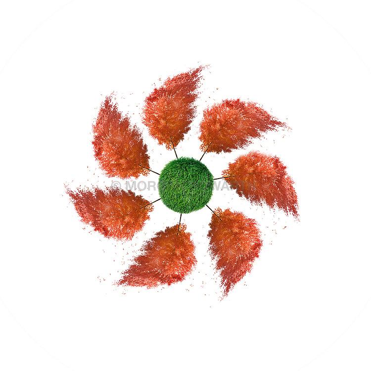Pinwheel of red autumn trees on island of grass