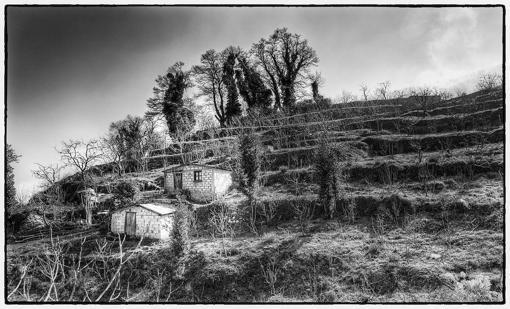 Terraced hillside