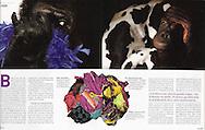 IKONO (France), 1/2006, Photographs by Heidi & Hans-Juergen Koch/animal-affairs.com