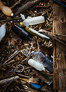 Rifiuti di plastica in riva al mare, zona costiera Adriatica meridionale. Bari 15 Gennaio 2020. Christian Mantuano / OneShot