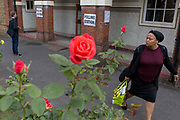 Seen through the Labour Party symbol red roses, voters arrive and leave the polling station on the morning of the UK 2017 general elections outside St. Saviours Parish Hall in Herne Hill, Lambeth, on 8th June 2017, in London, England.