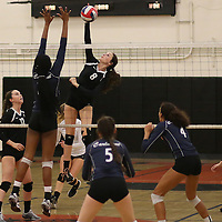 (Photograph by Bill Gerth for SVCN) Los Gatos #8 Alex Anthony  spikes the ball vs Carlmont in a CCS Division 1 Semi Final Girls Volleyball Game at Los Gatos High School, Los Gatos CA on 11/9/16.  (Los Gatos defeated Carlmont 3-0, 25-21, 25-17, 25-16)