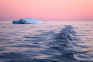Sermeq Kujalleq glacier is one of the fastest (19 m per day) and most active glaciers in the world. It annually calves over 35 km3 of ice. You can sail among enormous icebergs and smaller chunks of that ice in Ilulissat Icefjord.