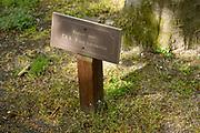 APELDOORN, 09-06-2021 , Kroondomein Het Loo<br /> <br /> Kroondomein Het Loo is een landgoed op de Veluwe, in de Nederlandse provincie Gelderland. Het is het grootste landgoed van Nederland en omvat ongeveer 10.400 hectare.<br /> <br /> Op de foto:  3 bomen geplant door de prinsen Willem Alexander, Friso en Constantijn