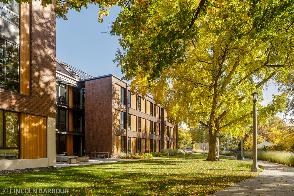 The backside of Stanton Hall with a lawn in the foreground and a huge tree glowing in the sunlight.