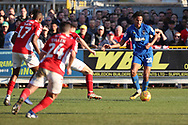 AFC Wimbledon defender Toby Sibbick (20) about to pass the ball during the EFL Sky Bet League 1 match between AFC Wimbledon and Charlton Athletic at the Cherry Red Records Stadium, Kingston, England on 23 February 2019.