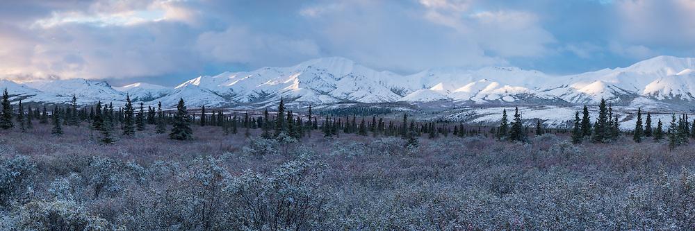 Morning light on The Alaska Range, Denali National Park, Alaska