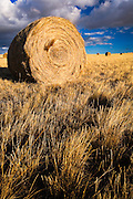 Hay Bale near Three Forks, Montana.