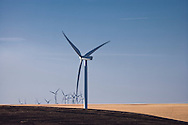 electric generating windmills in the Palouse region of eastern Washington, USA
