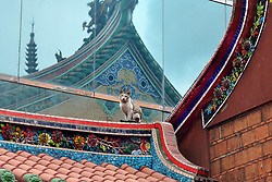 April 15, 2018 - Taipei, Taiwan - Cat on the roof of Lungshan Temple, Taipei, Taiwan. (Credit Image: © Rory Merry via ZUMA Wire)