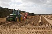John Deere tractor pulling de-stoning machinery in preparation for planting potatoes, Shottisham, Suffolk, England