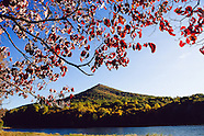 Virginia landscapes