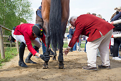 Wathelet Gregory, (BEL), Conrad de Hus<br /> Furusiyya FEI Nations Cup of Belgium<br /> Longines Spring Classic of Flanders - Lummen 2015<br /> © Hippo Foto - Dirk Caremans<br /> 01/05/15