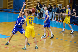 Sebic Stanko of  KK Tajfun Sentjur and Mljkovis Milos of KK Sencur GGD during basketball match between KK Sencur  GGD and KK Tajfun Sentjur for Spar cup 2016, on 16th of February , 2016 in Sencur, Sencur Sports hall, Slovenia. Photo by Grega Valancic / Sportida.com