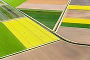 Nederland, Flevoland, Gemeente Noordoostpolder, 07-05-2015; bollenvelden met tulpen en narcissen in de nieuwe bollenstreek. Noordoostpolder ten noorden van Bant. <br /> Bulb fields with tulips and daffodils. Northeast Polder, the new flower bulb region.<br /> luchtfoto (toeslag op standard tarieven);<br /> aerial photo (additional fee required);<br /> copyright foto/photo Siebe Swart