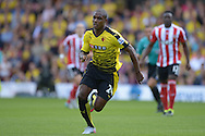 Odion Ighalo of Watford in action. Barclays Premier League, Watford v Southampton at Vicarage Road in London on Sunday 23rd August 2015.<br /> pic by John Patrick Fletcher, Andrew Orchard sports photography.