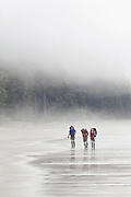 Hikers on a beach in the mist near Bonilla Point, West Coast Trail, British Columbia, Canada.