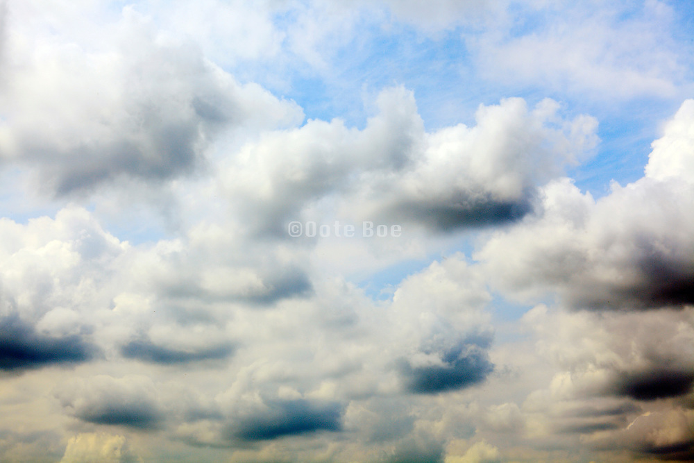puffy cumulus clouds dot the sky on a summer day