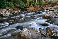 Rushing Water, Great Smoky Mountains National Park, Tennessee