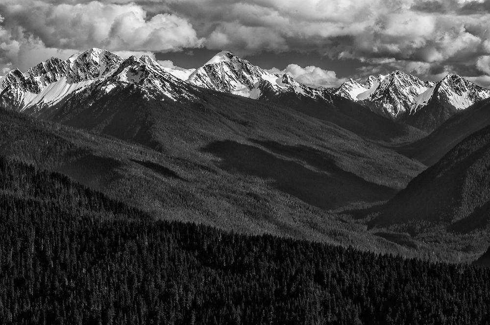 Elwha River Valley, afternoon light, May, view from Hurricane Ridge, Olympic National Park, Washington, USA