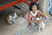 South East Asia, Cambodia, Phnom Penh. Khmer families and children love their pet dogs, and would never eat them<br /><br />Whilst some people eat dog meat, it is not commonplace. But it is a poorman's meat as it is a cheaper than beef, pork or chicken. The practice of hunting and catching stray dogs is common place, and sometimes even poaching domestic dogs. The Khmer prefer wild dog to 'farm' grown dogs. However the dogs are often treated inhumanely, and killed by strangulation or even boiled alive. It is thought by some that a dog filled with fear makes better meat. The animal is shaved and butchered. Favorite khmer dishes include dog paw curry and dog's head.<br /><br />Dog meat is eaten all over the world. An estimated 25 million dogs are eaten every year. For some societies eating dog is taboo, for others its acceptable.