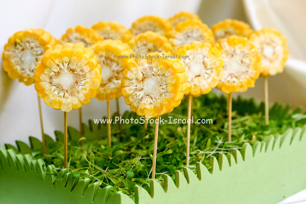 Sweet corn lollipop This image has a restriction for licensing in Israel