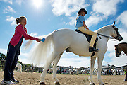 09/08/2012 Repro free first use. Claire Mullin on board Pontoon with Aisling Wixked combing the tail of the pony at the Connemara Pony Show in Clifden County Galway . Photo:Andrew Downes.