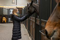 Wauters Caroline, BEL, Mr. Jones<br /> Stephex Stables Wolvertem 2021<br /> © Hippo Foto - Dirk Caremans<br /> 15/01/2021
