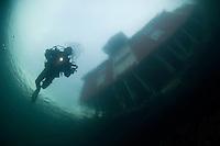 Under the house, Klas Malmberg, Atlantic marine life, Saltstraumen, Bodö, Norway.Model release by photographer