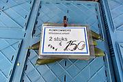 Nederland, Nijmegen, 16-8-2014Opde markt zijn nederlandse groenten en fruit in de aanbieding. De prijzen zijn sterk gedaald vanwege de sancties jegens Rusland ende  boycot van Rusland van Europese groente en fruit.FOTO: FLIP FRANSSEN/ HOLLANDSE HOOGTE