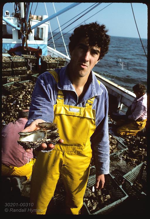 Jean Pierre Allenou, IFREMER biologist, holds empty shells of flat oysters eaten by seastar France