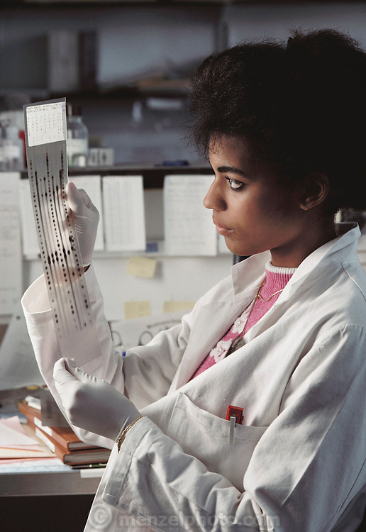 (1992) DNA fingerprinting. Lauren Galbreath, a laboratory technician making a visual check of a DNA autoradiograph (autorads). Autorads are produced by labeling the DNA fragments in an electrophoresis gel with a radioactive marker chemical. The gel is then placed on a piece of X- ray film; the radiation from the marker leaves a dark patch, representing each fragment, on the film after development. Comparison of autorads from two samples of DNA is the method by which a correlation may be made - so-called DNA fingerprinting. Tarrytown New York State, USA. MODEL RELEASED