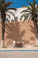 The medina walls at Essaouira, Morocco
