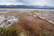 Water in salt pans along Badwater Road in Death Valley National Park, California, USA.