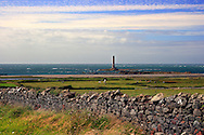 A wider view of the lighthouse of Goury in the Cotentin Peninsula and the surrounding fields, with in the foreground a small herd of cows grazing next to the shore