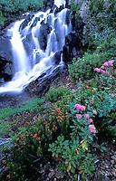 Waterfall near Green Lake in the high Sierra Nevadas, CA
