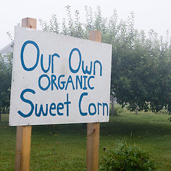 Organic corn sign at Harlow Farm in Westminster, Vermont.  Connecticut River Valley.