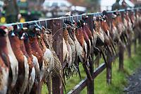 Washbrook Farm Shoot  27th November 2018